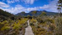 Trekking the spectacular Overland Track |  <i>Mark Whitelock</i>